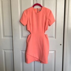 Elizabeth and James mini dress